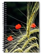 Red Corn Poppies Spiral Notebook