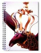 Red Crow Spiral Notebook