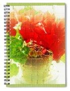 Red Cyclamen On Windowsill Spiral Notebook