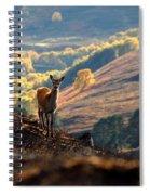 Red Deer Calf Spiral Notebook