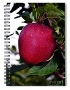 Red Delicious Spiral Notebook