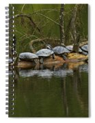 Red-eared Slider Turtles Spiral Notebook