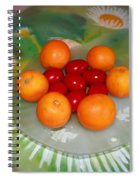 Red Eggs And Oranges Spiral Notebook