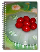 Red Eggs And Daisies Spiral Notebook