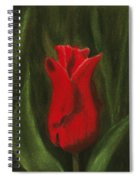 Red Elegance Spiral Notebook