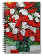 Red Explosion Spiral Notebook