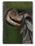 Red Eye Beauty Spiral Notebook