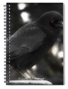Red Eye Spiral Notebook