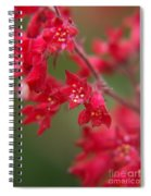 Red Fairy Trumpets Spiral Notebook