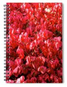 Red Fall Spiral Notebook