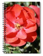 Red Flower I Spiral Notebook