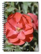 Red Flower II Spiral Notebook