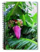 Red Flower Of A Banana Against Green Leaves Spiral Notebook