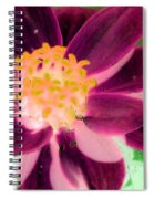 Red Flower - Photopower 256 Spiral Notebook