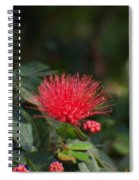 Red Flower Spraying Spiral Notebook