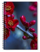 Red Flowering Quince Spiral Notebook