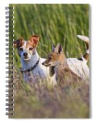 Red Fox Cub With Jack Russel Spiral Notebook