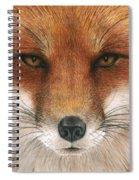 Red Fox Gaze Spiral Notebook