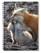 Red Fox Kits And Parent Spiral Notebook