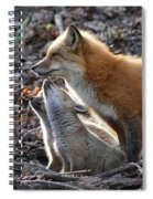 Red Fox With Kits Spiral Notebook