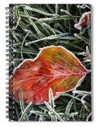 Red Frosty Leaf On Frozen Ground Spiral Notebook