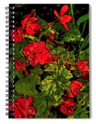 Red Geranium Line Art Spiral Notebook