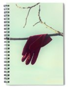 Red Glove Spiral Notebook