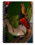 Red Glowing Beetle Spiral Notebook