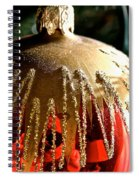 Red Gold Glitter Spiral Notebook