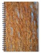 Red Gold Spiral Notebook