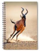 Red Hartebeest Running Spiral Notebook