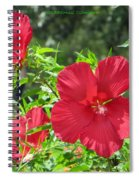 Red Hollyhocks Spiral Notebook