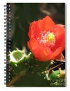 Hot Red Cactus Spiral Notebook