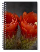 Red Hot Pair  Spiral Notebook