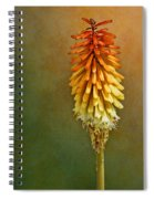 Red Hot Poker Spiral Notebook
