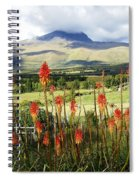 Red Hot Pokers Of The Andes Spiral Notebook