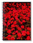Red Impatiens Flowers Spiral Notebook