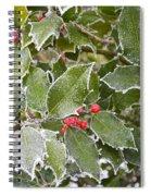 Red In Winter Spiral Notebook