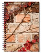Red Ivy Leaves Creeper Spiral Notebook