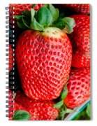 Red Juicy Delicious California Strawberry Spiral Notebook