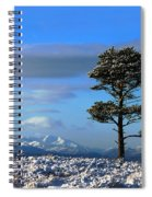Red Kite Spiral Notebook