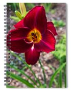 Red Lady Lily 1 Spiral Notebook