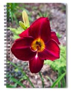 Red Lady Lily 2 Spiral Notebook