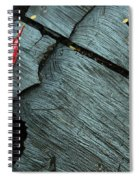 Red Leaf On Cut Wood Spiral Notebook