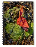 Red Leaf On Moss Spiral Notebook
