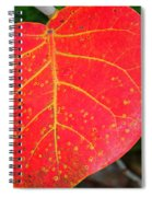 Red Leaf With Yellow Veins Spiral Notebook