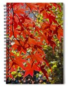 Red Leaves 1 Spiral Notebook