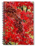 Red Leaves 3 Spiral Notebook
