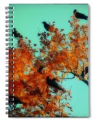 Red Leaves Among The Ravens Spiral Notebook