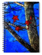 Red Leaves Blue Sky In Autumn Spiral Notebook